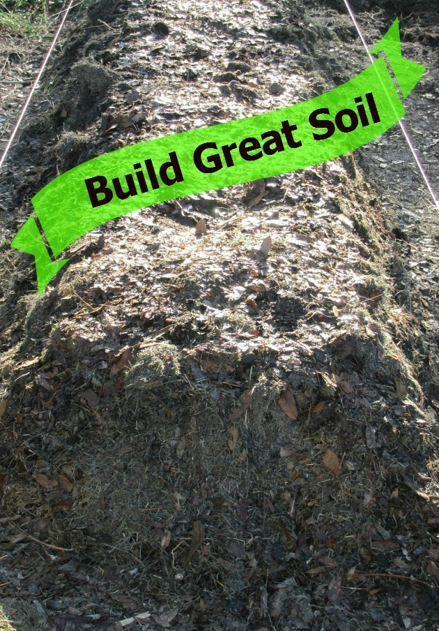 Build million dollar garden soil life is just ducky for Is soil living