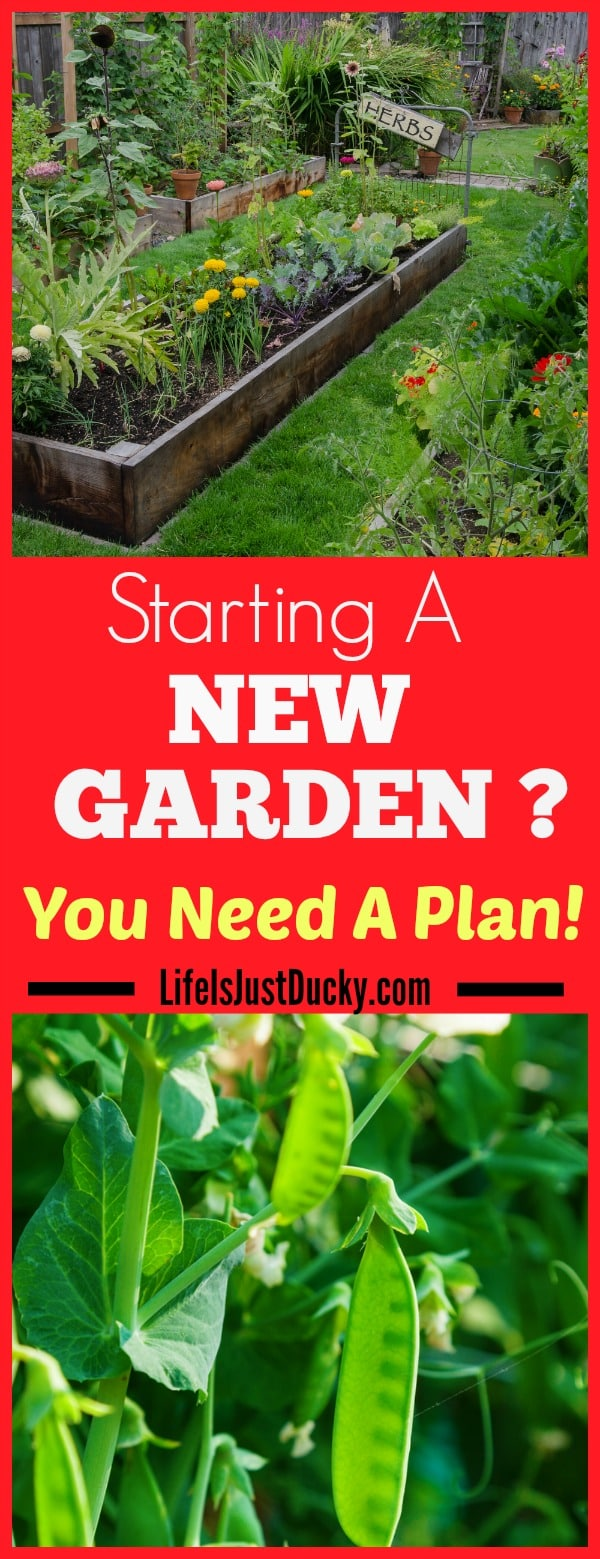 starting a new garden a well planned garden life is just ducky. Black Bedroom Furniture Sets. Home Design Ideas