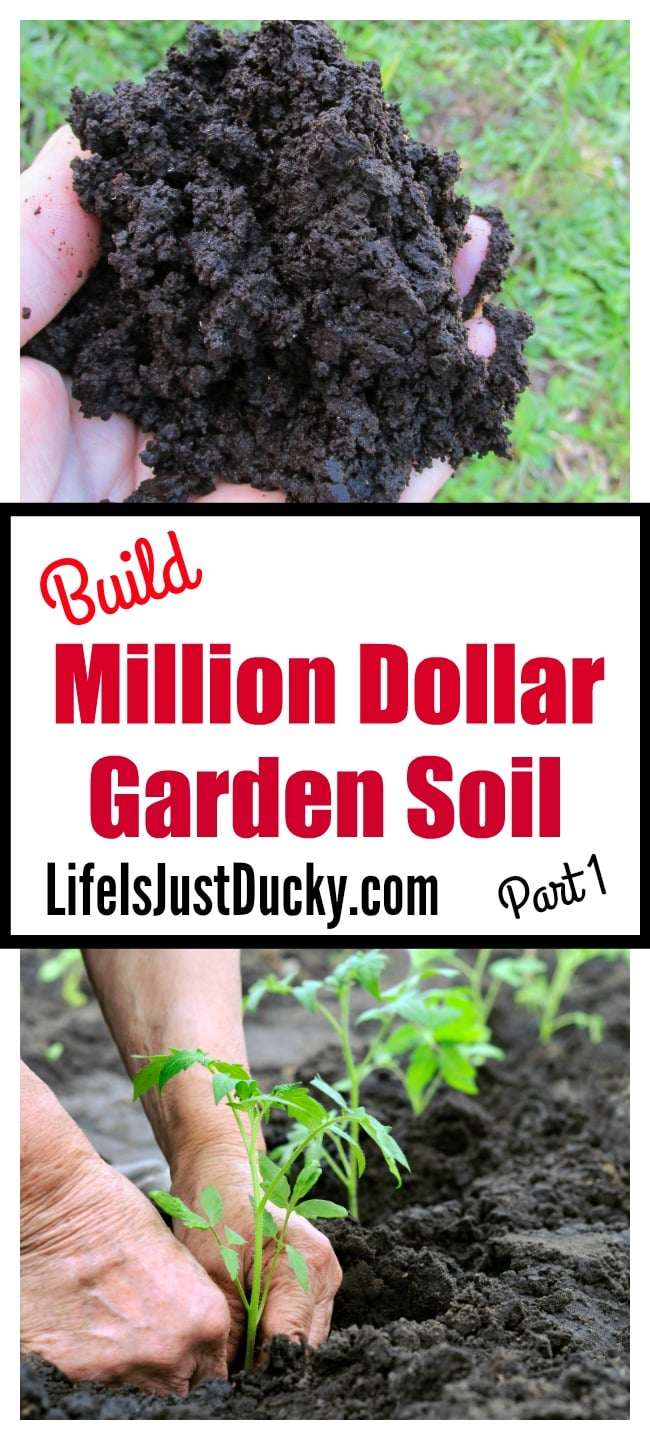 How to build million dollar vegetable garden soil easy to for What is soil made out of